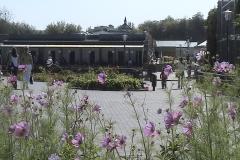 Лето 2011